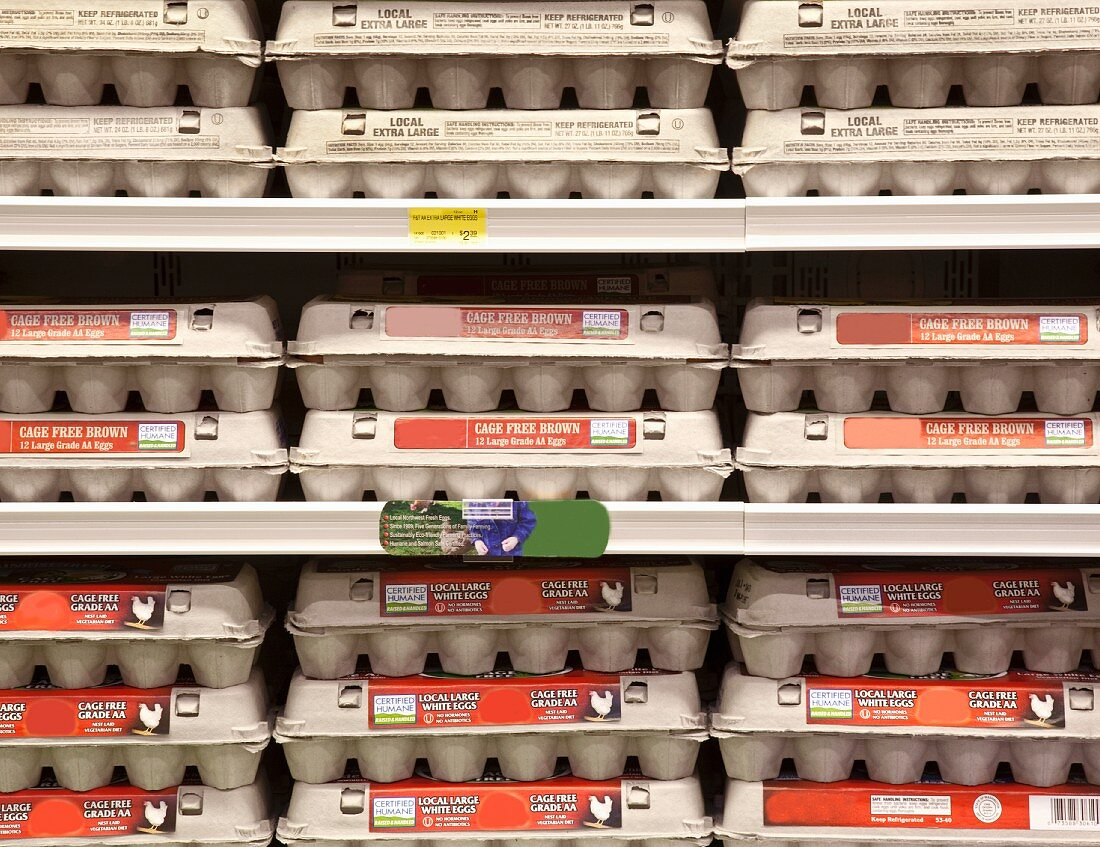Rows of Egg Cartons on Display