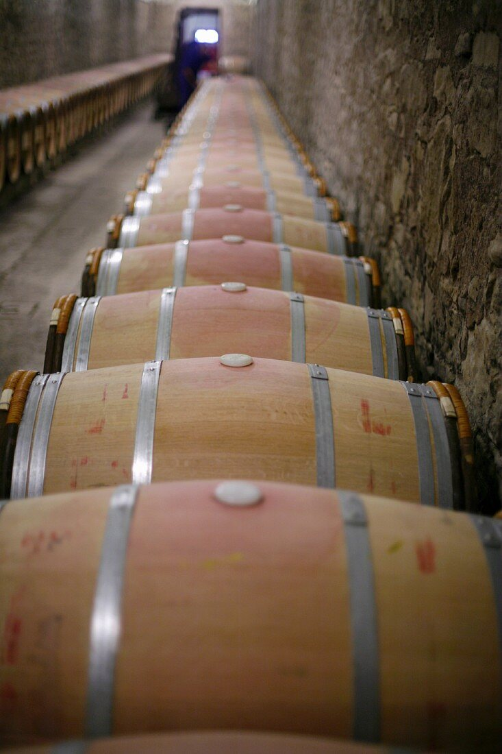 Barrels of Wine Aging in Caves at Marques de Riscal Winery in Rioja, Spain
