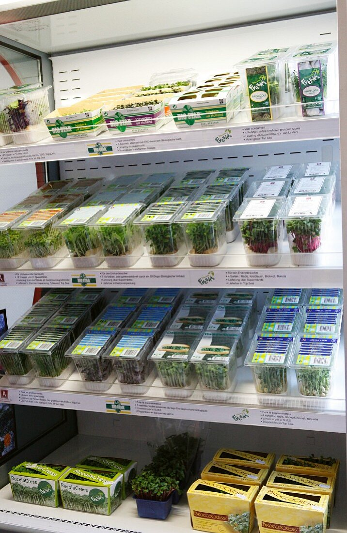 Assorted edible shoots in the chiller cabinet at the supermarket