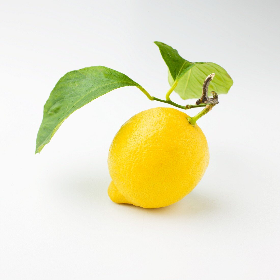 A lemon with a stem and leaves