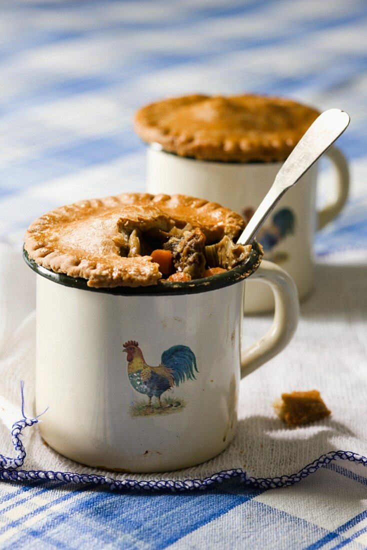 Beef pot pie with mushrooms and root vegetables