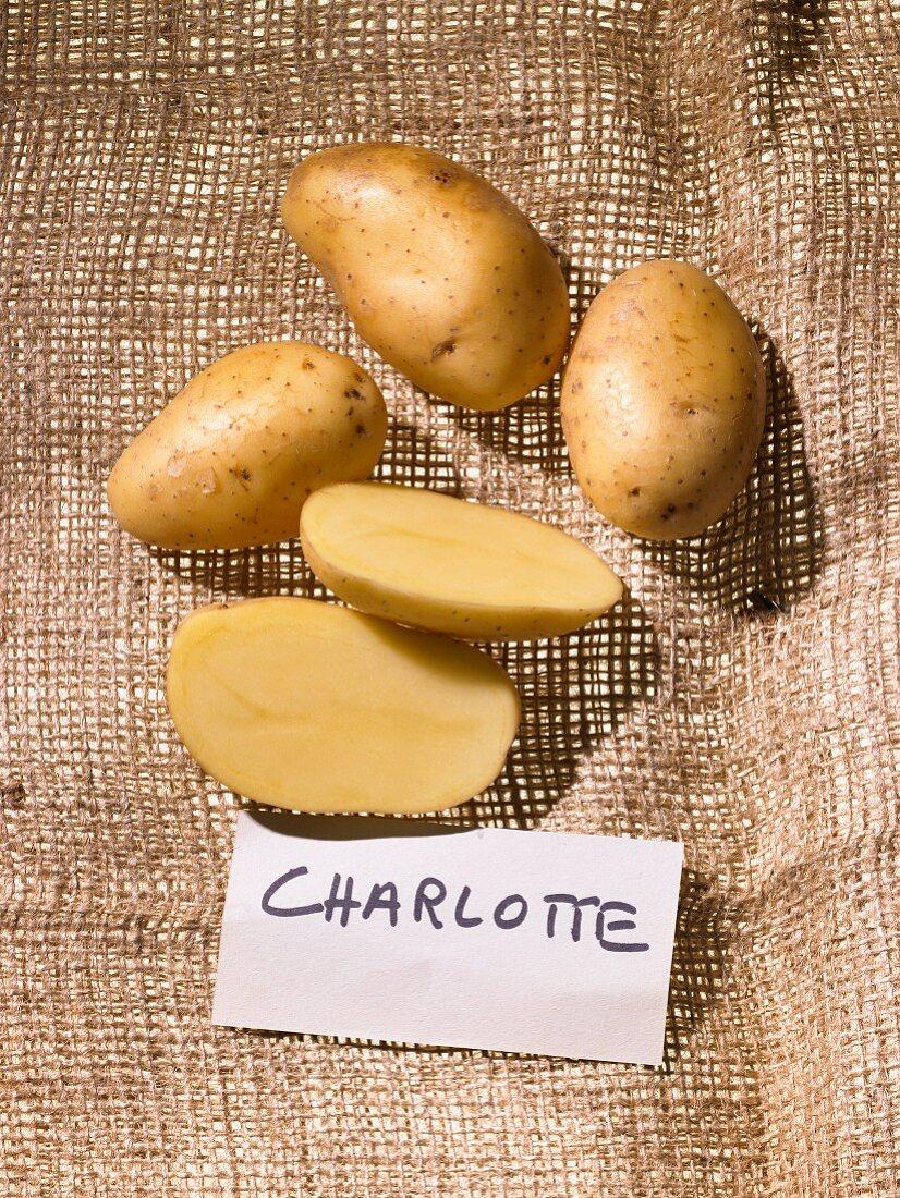 Potatoes (variety: Charlotte)