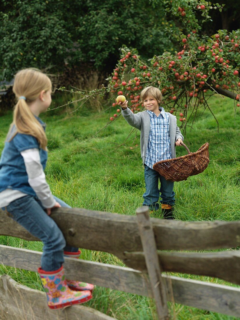 Boy showing apple to girl on fence