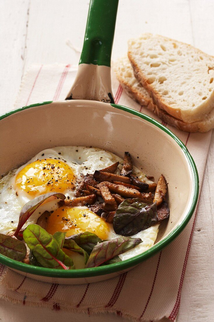 Fried eggs with Kalahari truffles and spinach in a pan