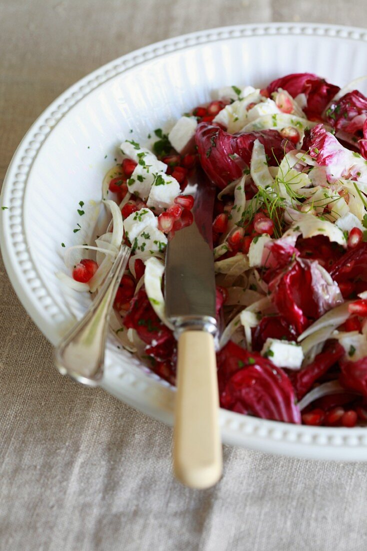 Radicchio salad with fennel, pomegranate seeds and feta