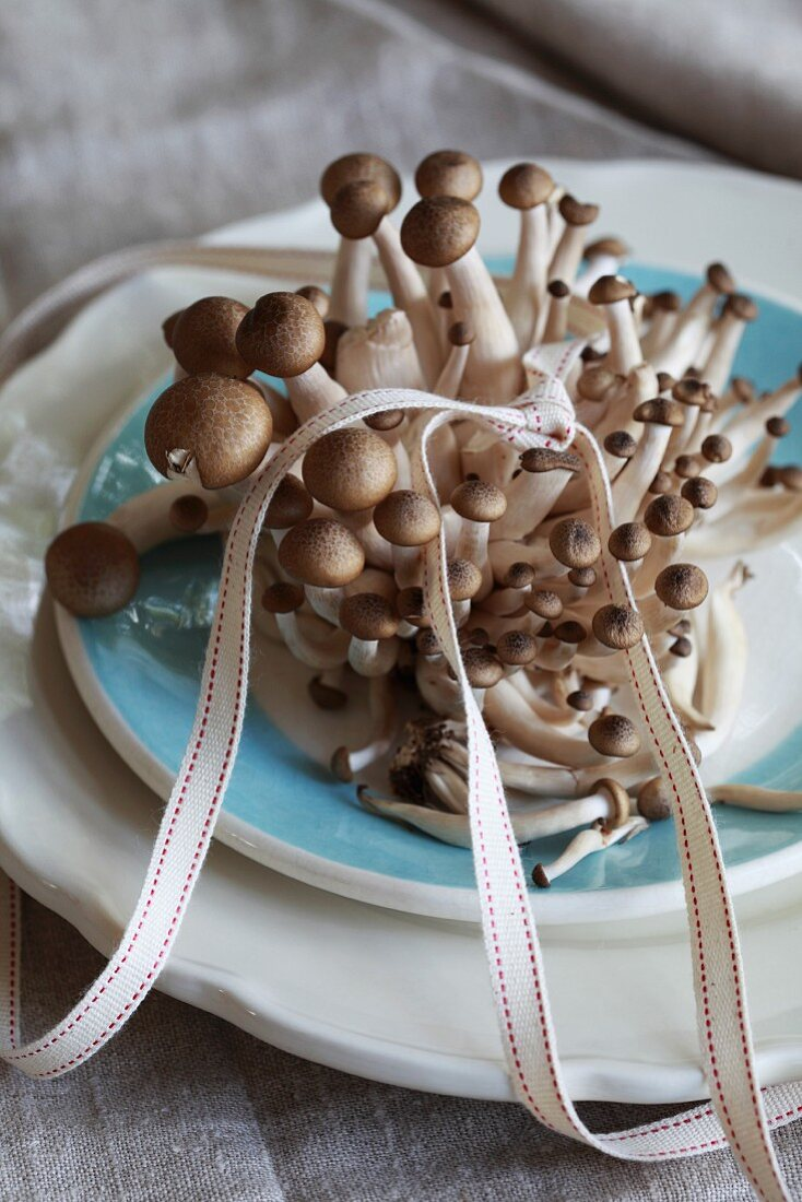 Fresh brown shimeji mushrooms on a plate