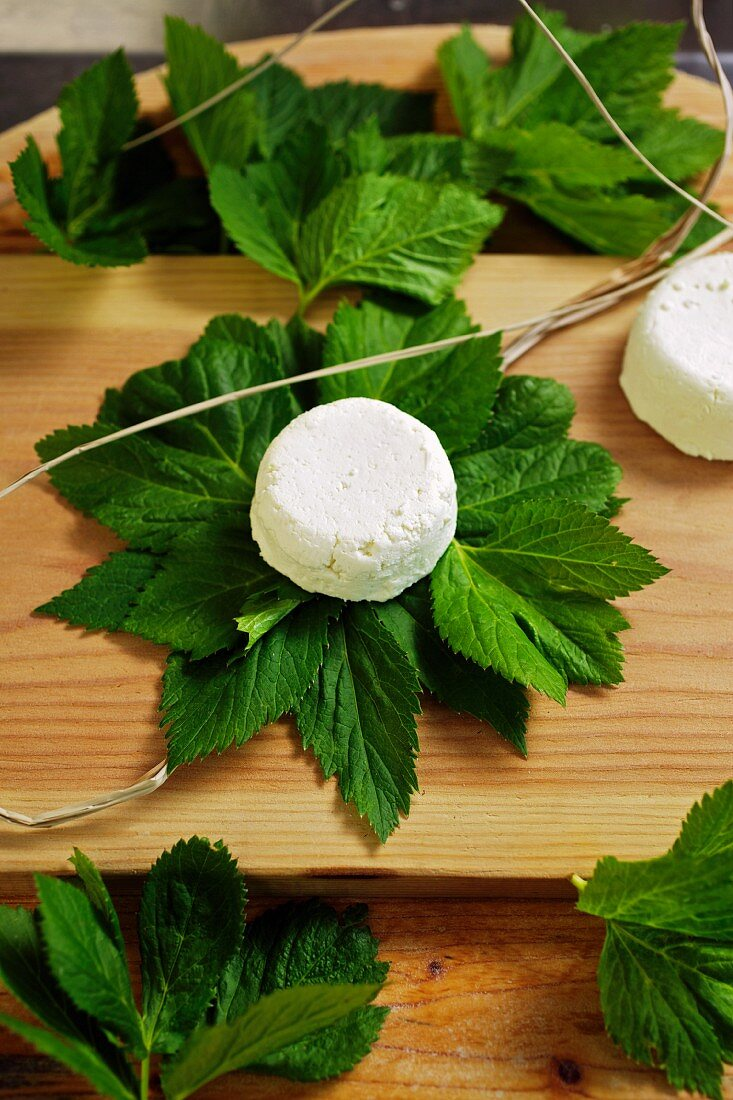 Goat's cheese in master wort leaves being prepared