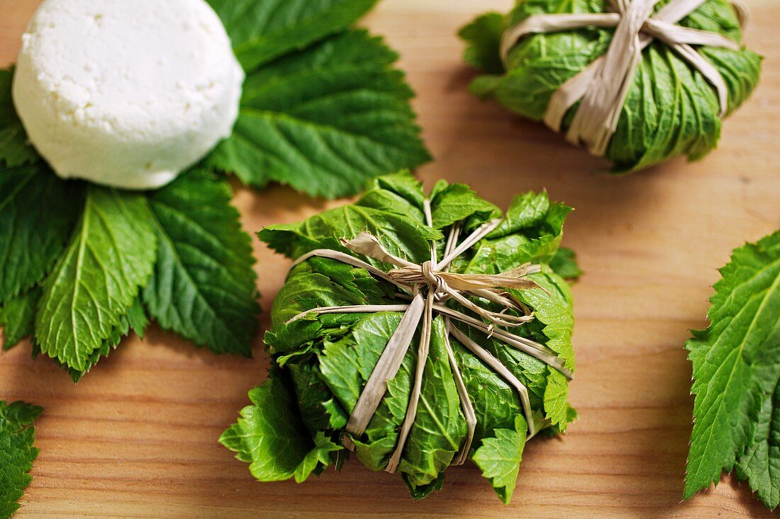 Goat's cheese wrapped in master wort leaves