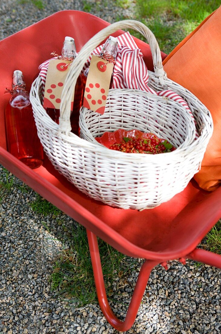 A wheelbarrow with a basket, redcurrants and redcurrant juice