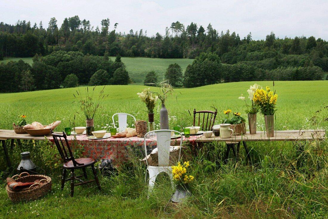 Table in meadow set for Norwegian summer festival