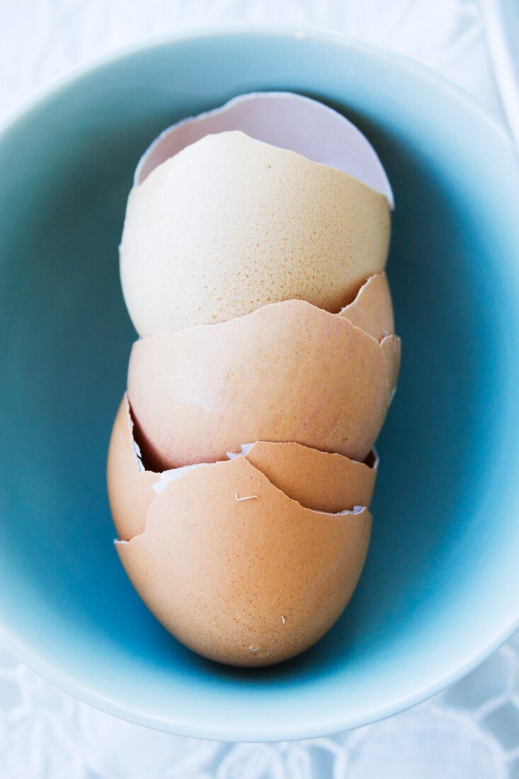 Cracked Egg Shells in a Bowl