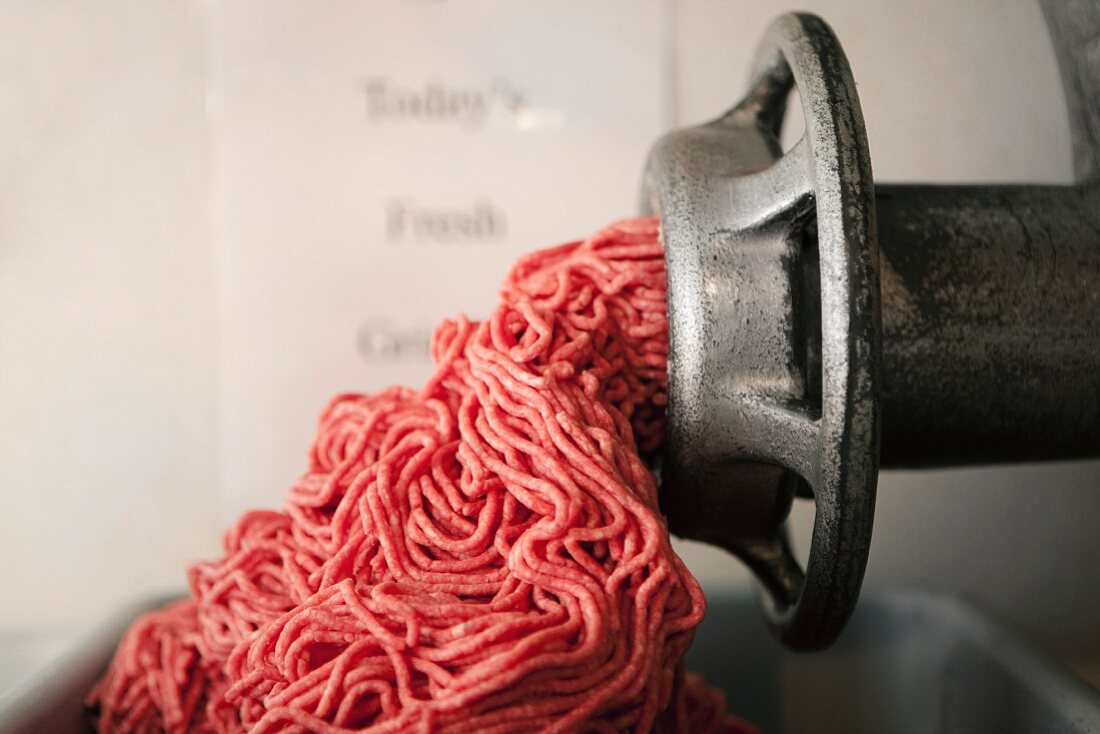 Raw Ground Beef Falling from a Meat Grinder
