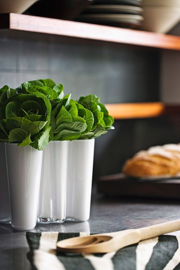 Blattgemüse in weiße Designer Aalto-Vase