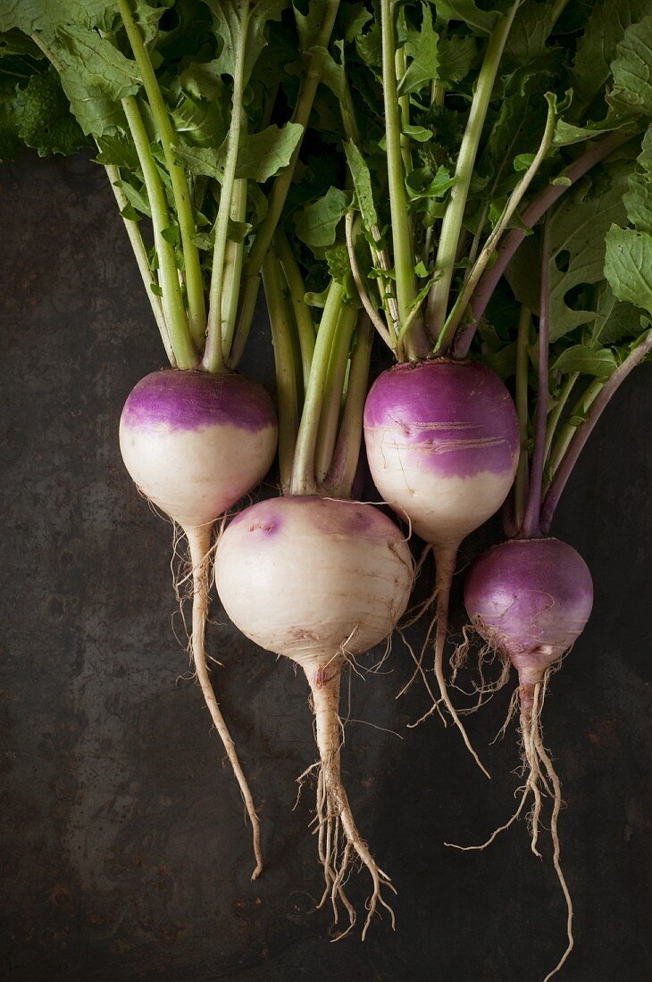 Purple Top Turnips with Greens