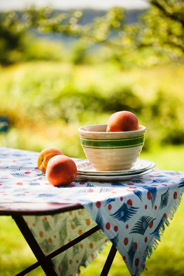 Peaches in and Beside a Bowl on an Outdoor Table