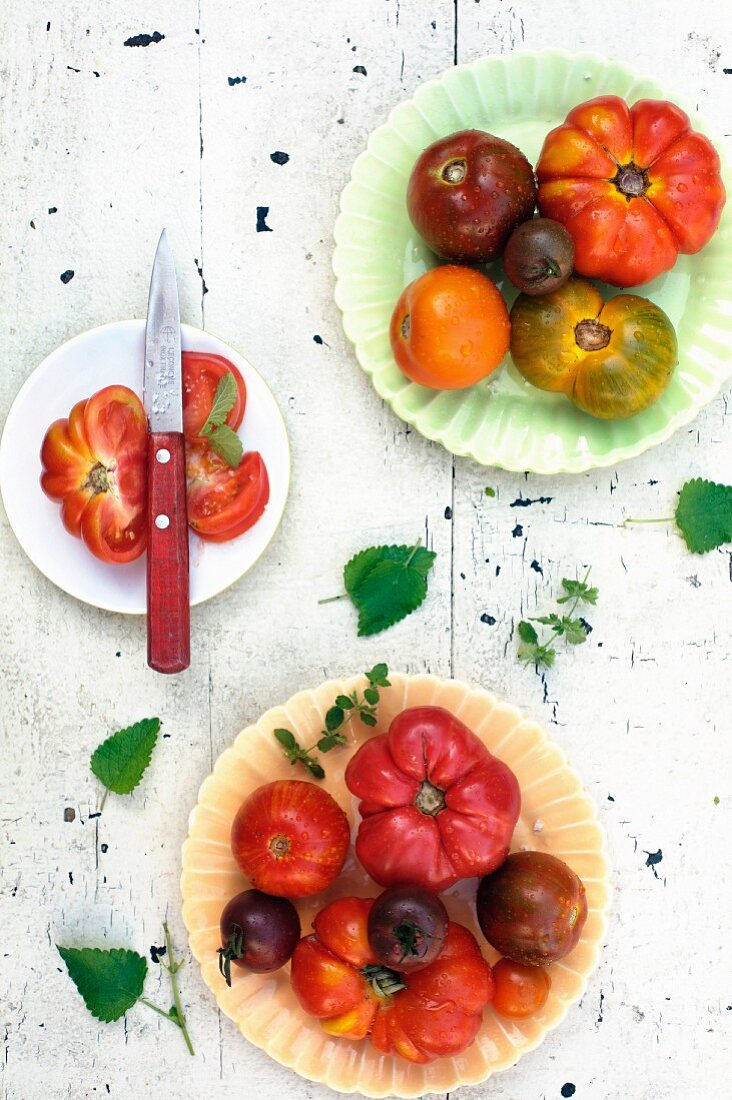 Three Plates of Assorted Tomatoes; Two Plates with Whole Tomatoes and One Plate with Sliced Tomato; From Above