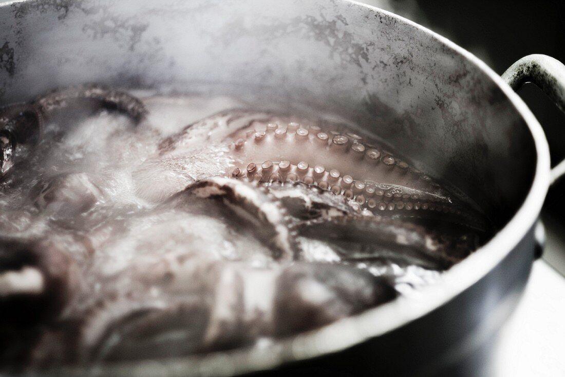 Oktopus im Wasser kochend