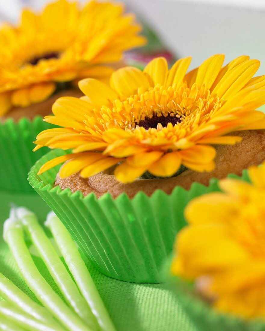 Celebration cupcakes with flowers
