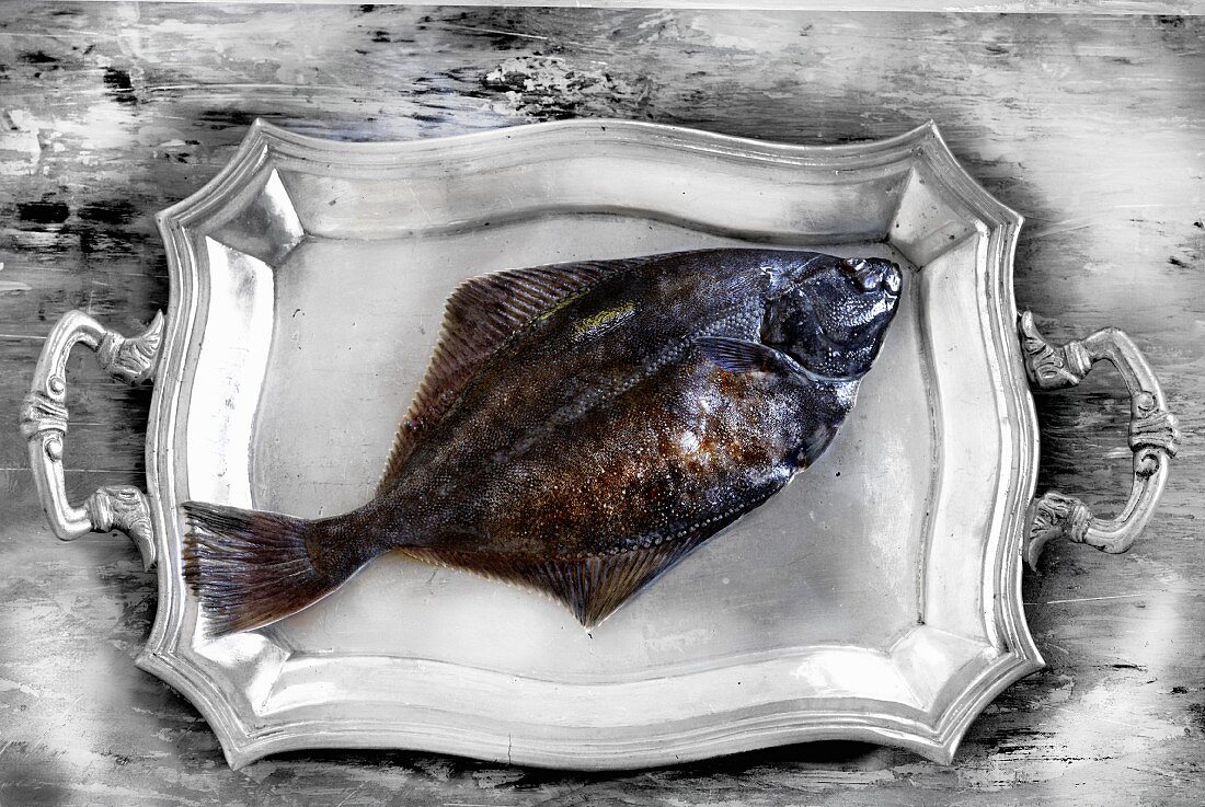 A whole flounder on a silver platter