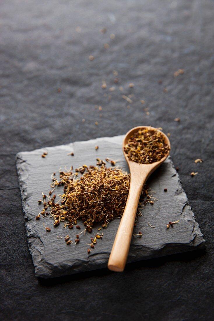 Dried alfalfa sprouts and alfalfa seedlings on slate
