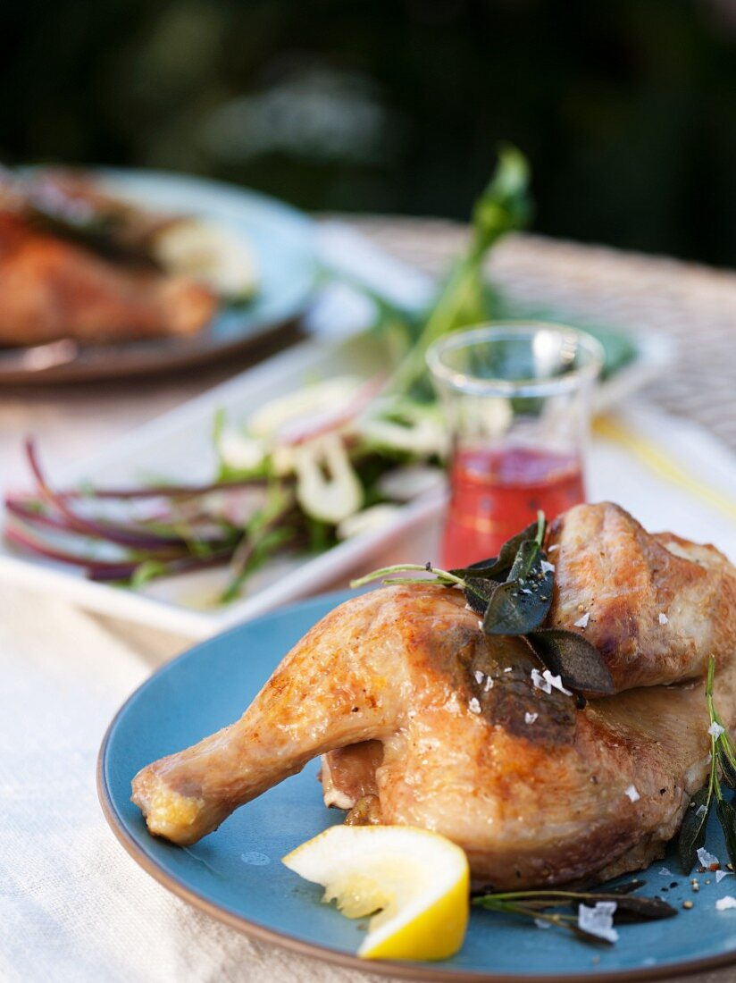 Cornish Game Hen with Lemon on a Blue Plate; With Salad on an Outdoor Table
