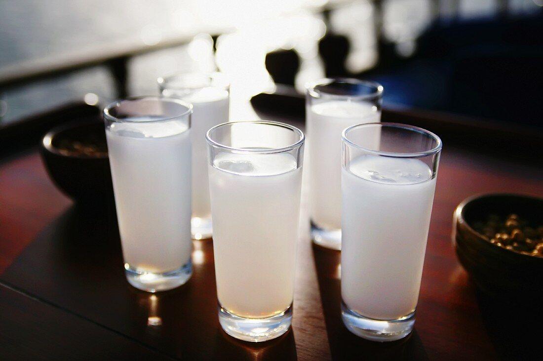 Five glasses of Raki with water (aniseed schnapps, Turkey)