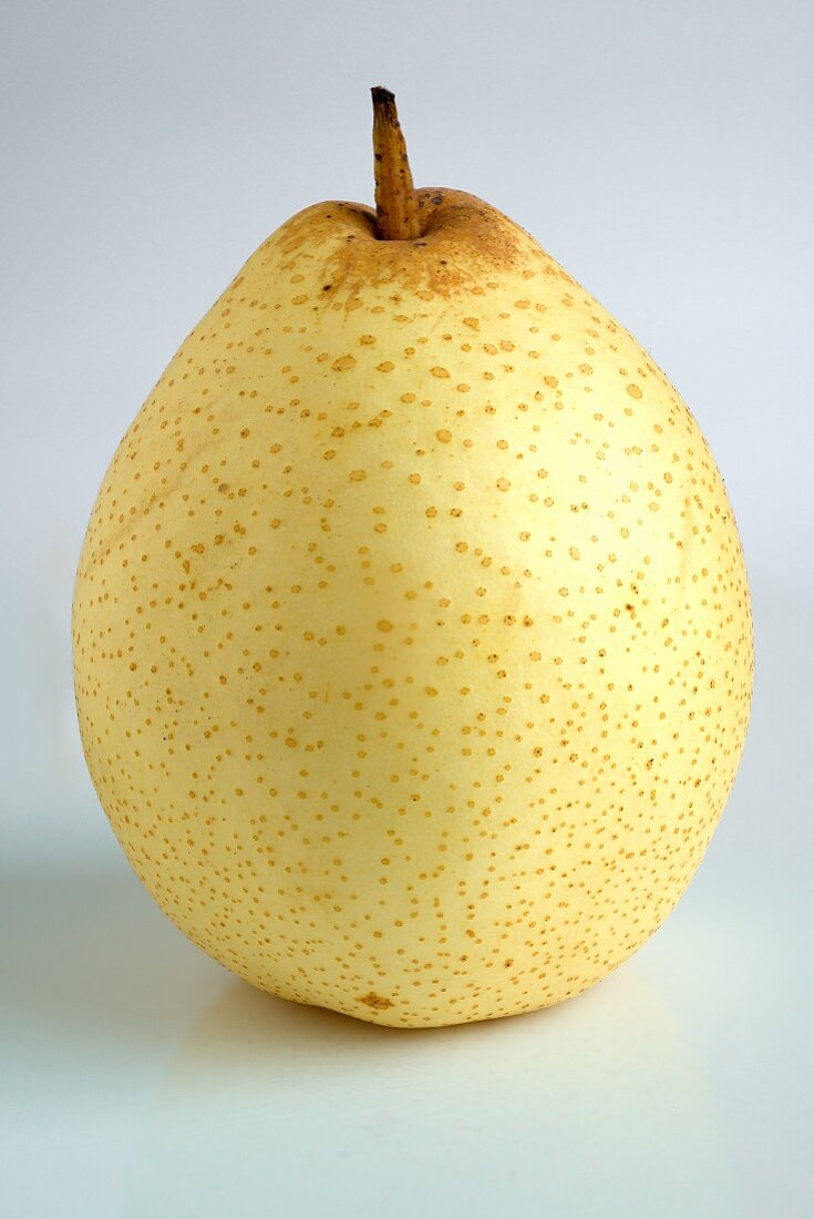 An Asian pear against a white background