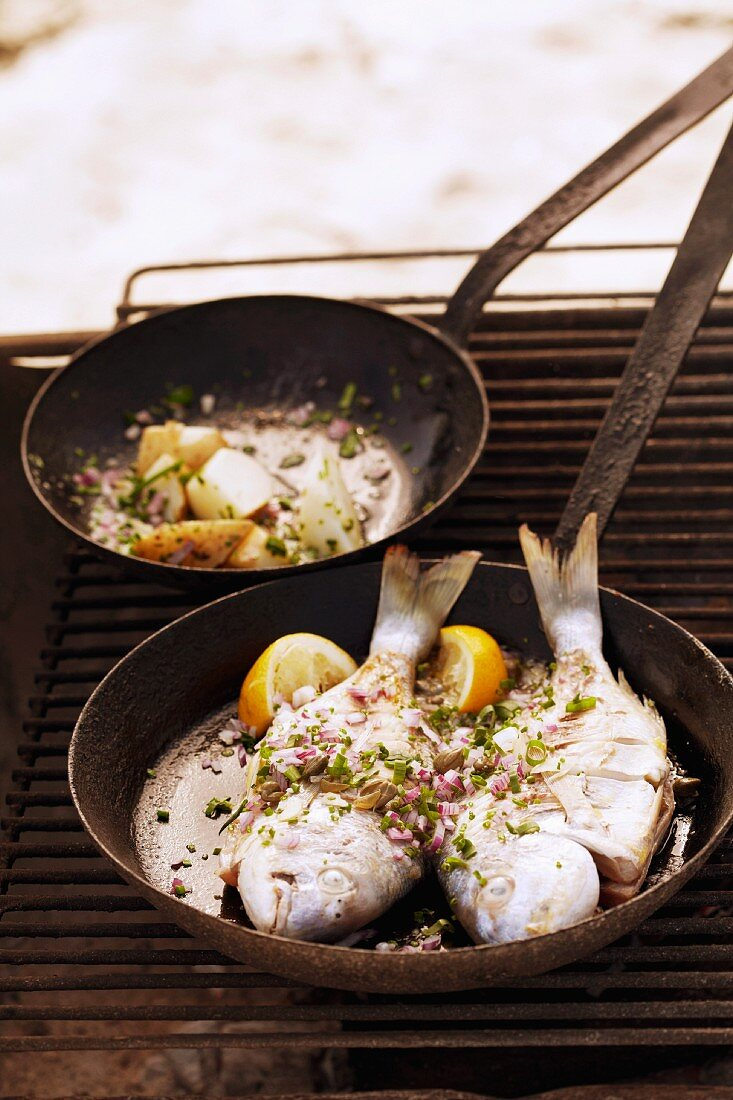 Barbecued fish in a pan on the barbecue