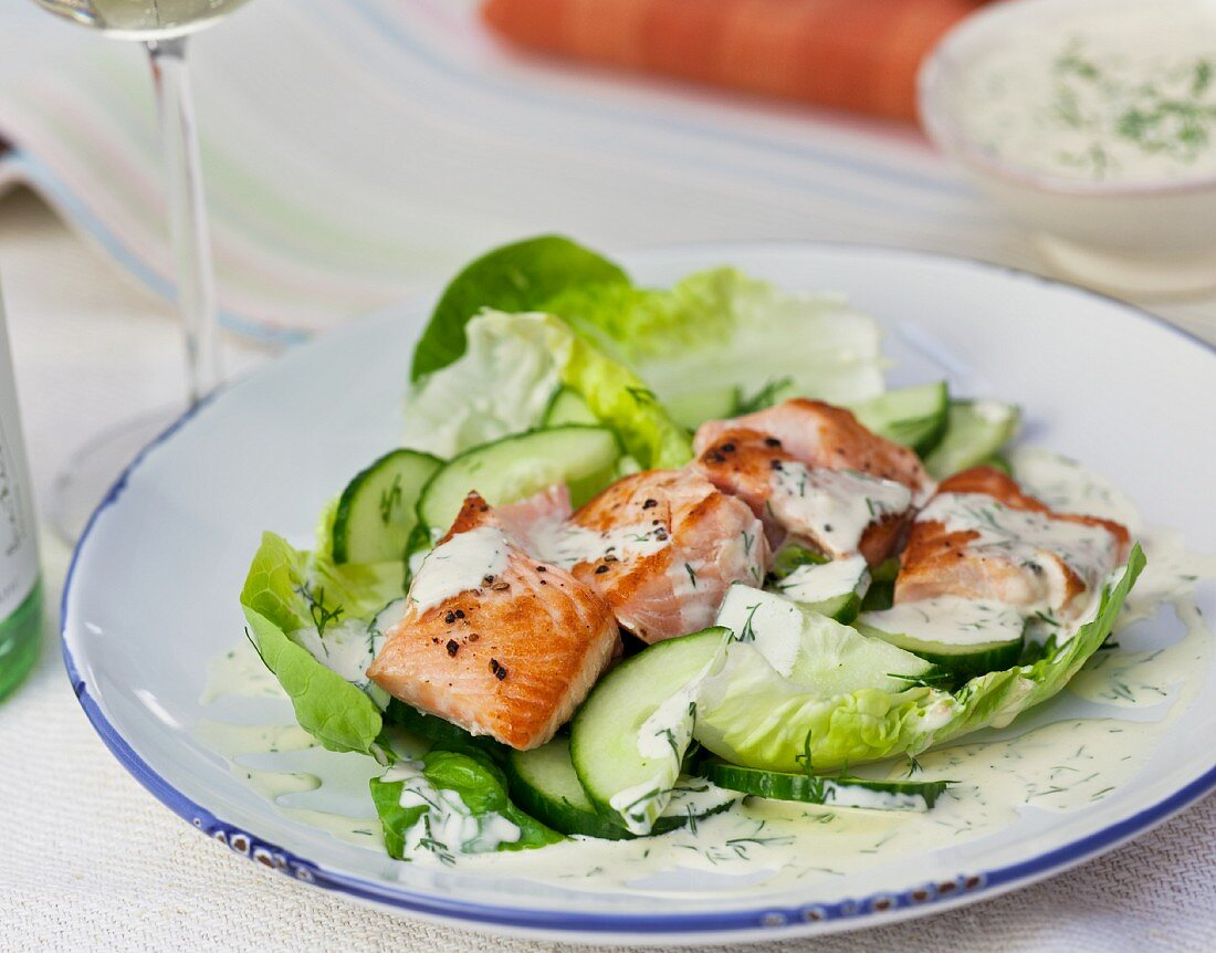 Salmon and cucumber salad with dill yoghurt
