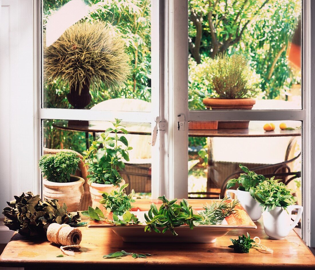 Lots of different herbs in front of a kitchen window with a view of the garden