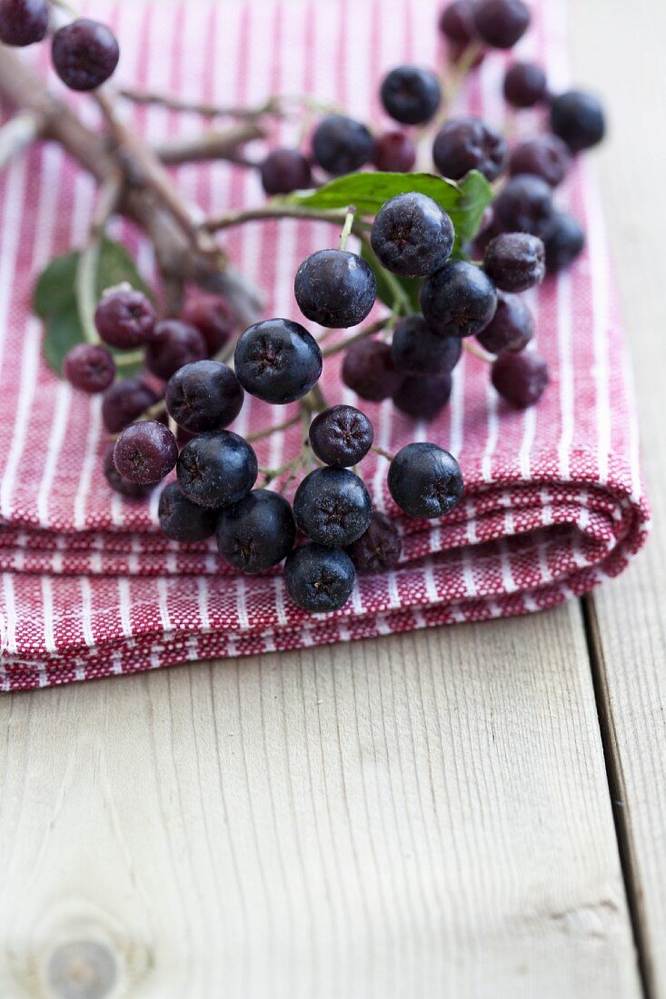 A sprig of aronia berries on a striped towel