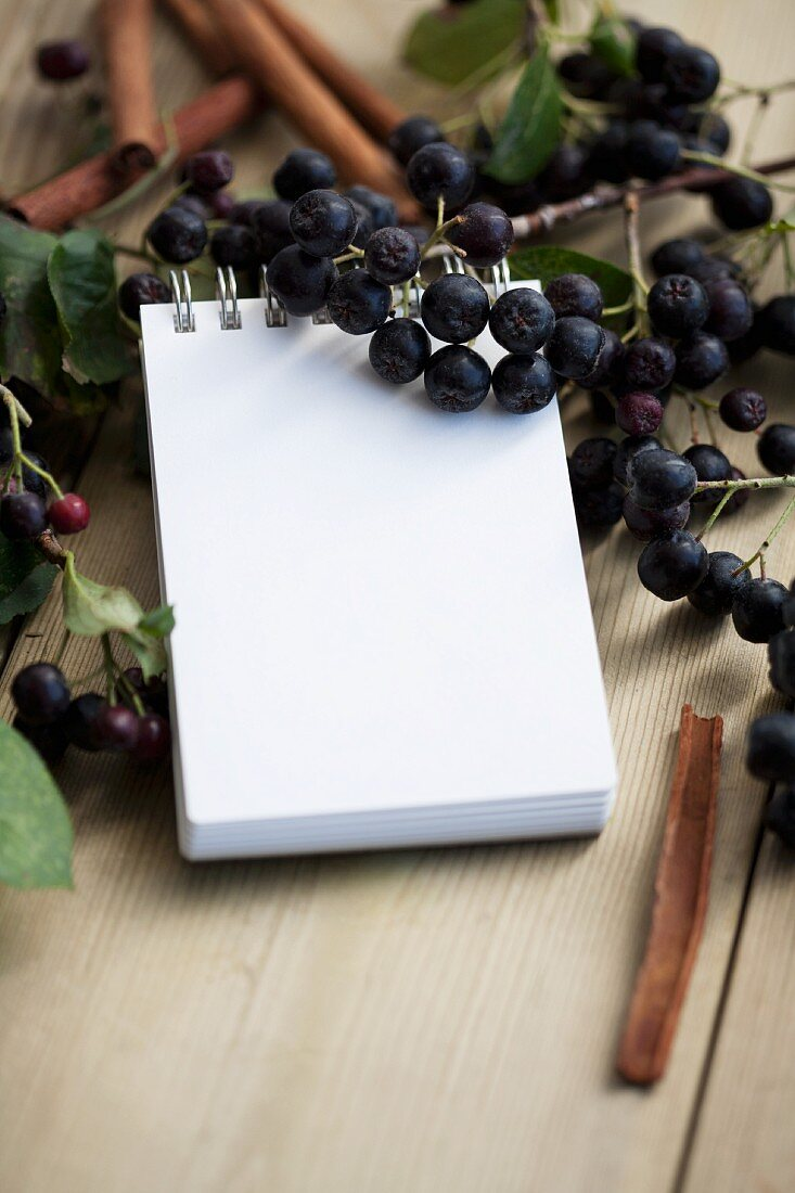 A notepad surrounded by fresh aronia berries