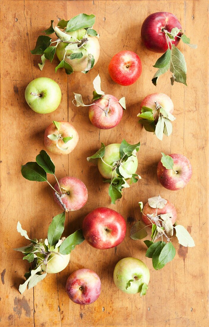 Fresh Picked Apples; Gala, Pink Lady, Granny Smith, Cameo, Rome and Northern Spy; On Rustic Table