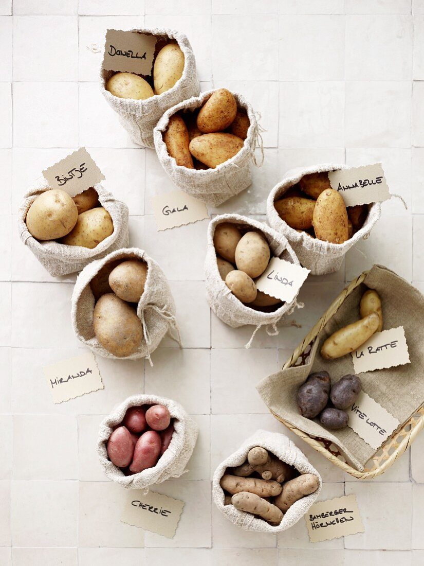 Assorted potato varieties in burlap bags with name cards