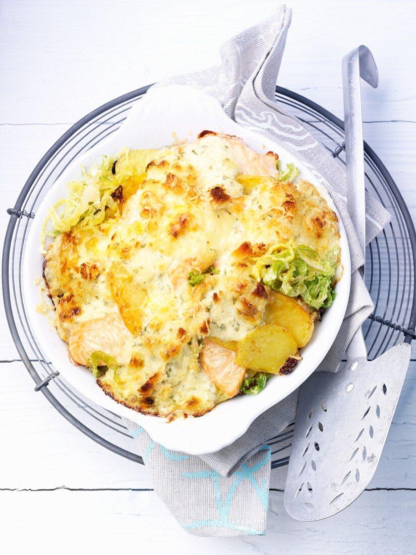 Savoy cabbage-salmon gratin with potatoes