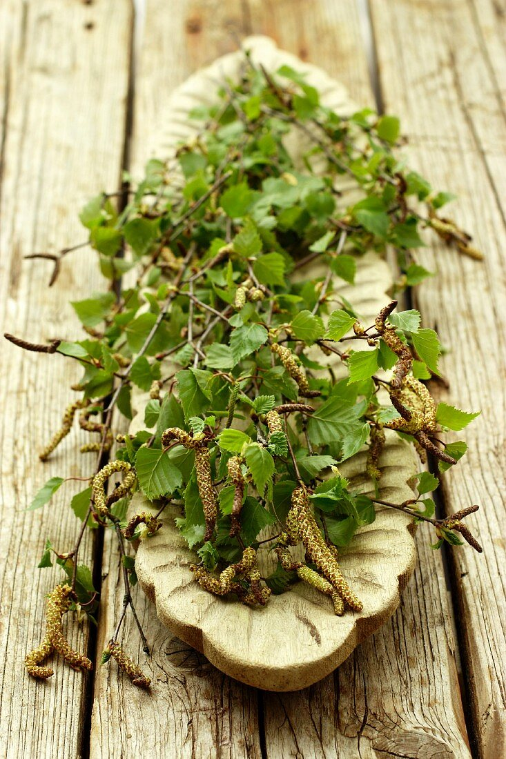 Birch twigs with catkins and leaves on a wooden serving platter