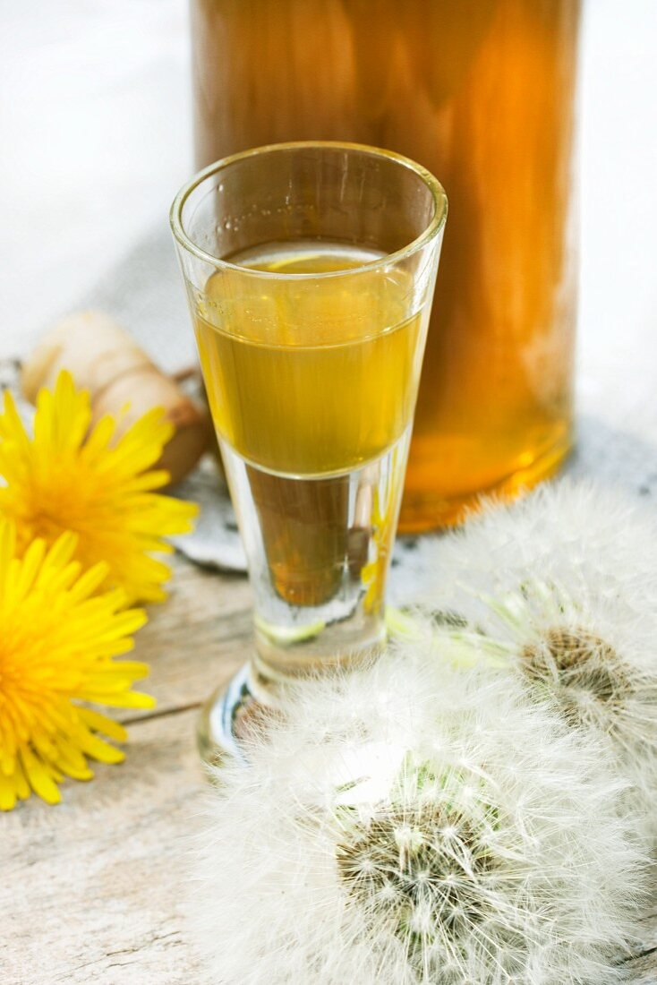 Bottle and glass of dandelion flower liqueur (close-up)
