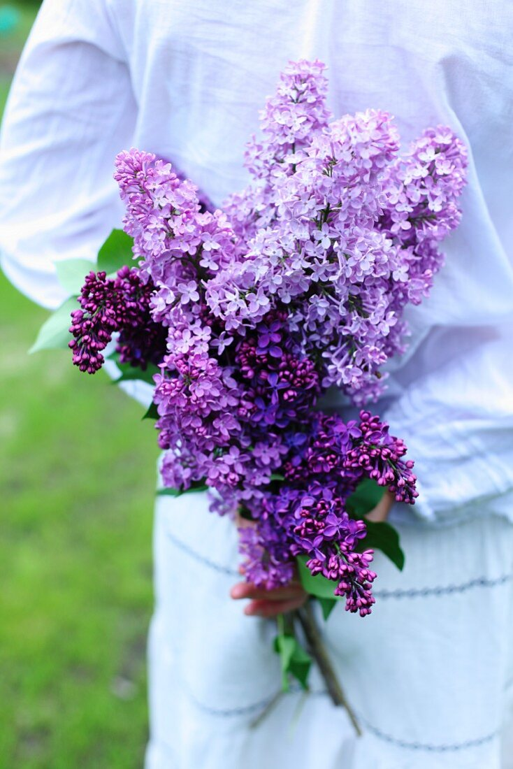 A woman holding purple lilac flowers