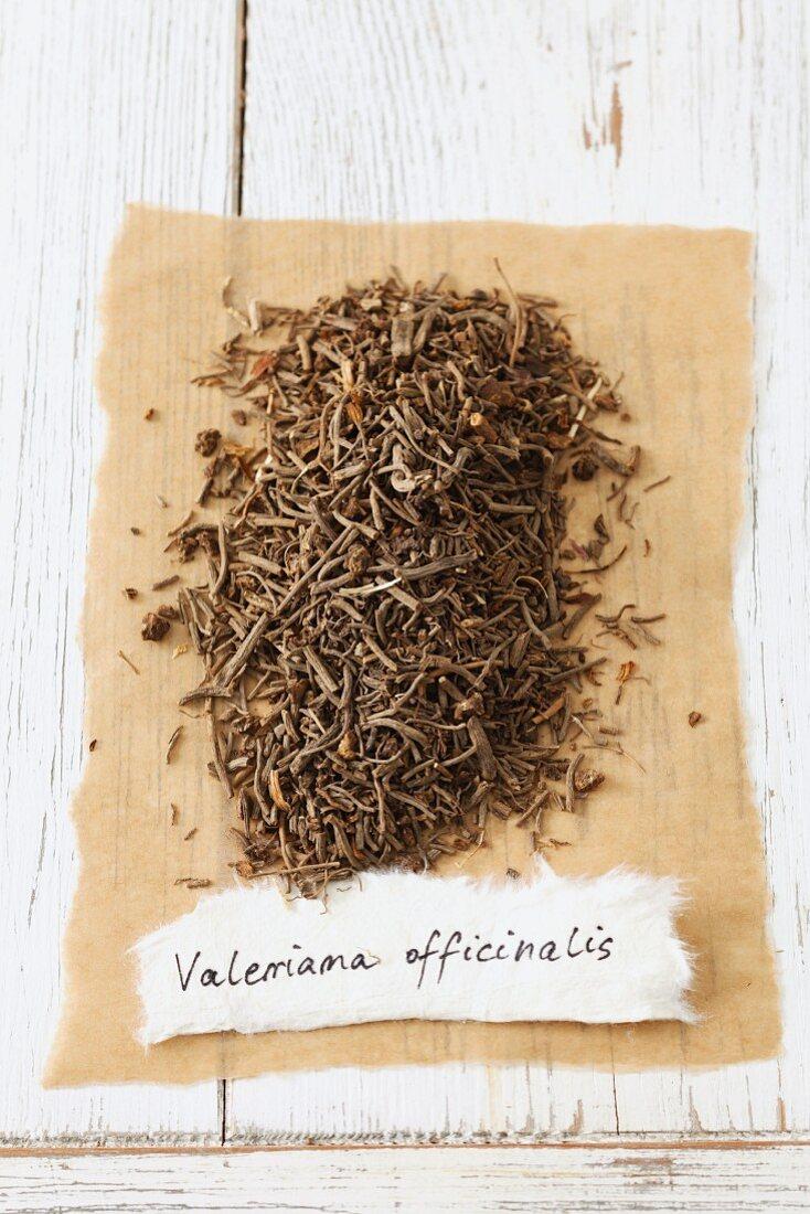Garden valerian (Valeriana officinalis), dried