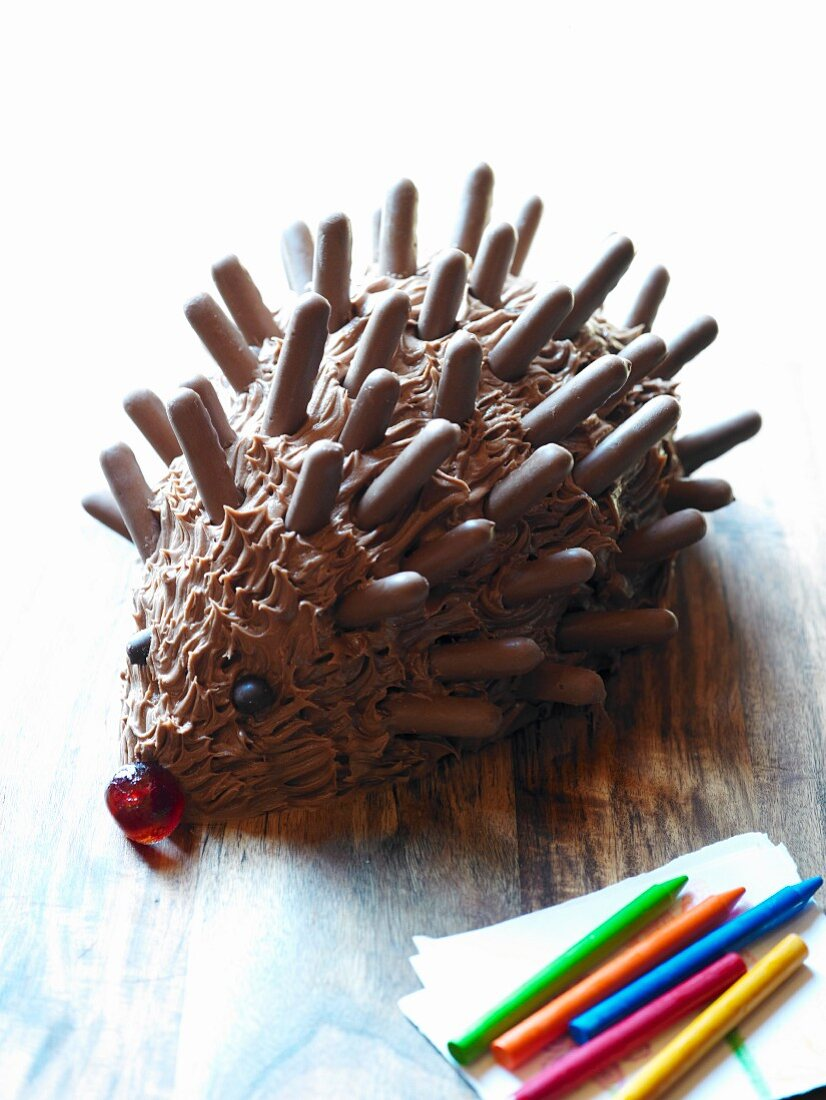 A chocolate hedgehog for a child's party