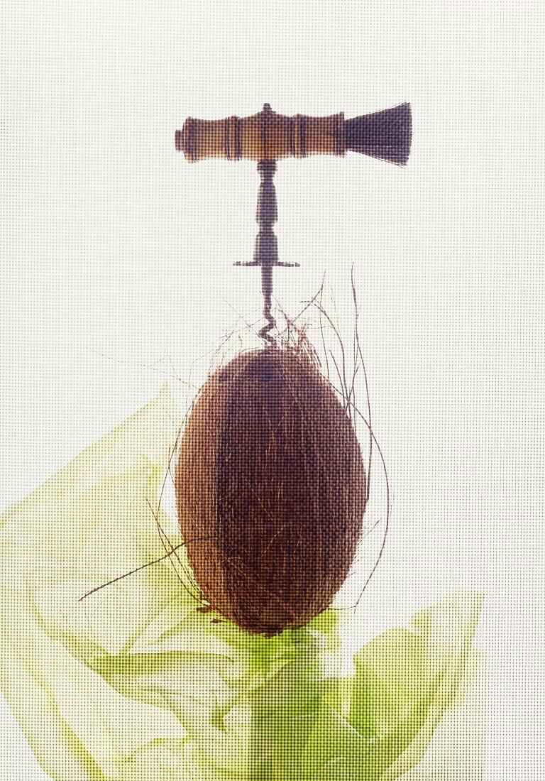 Coconut with corkshrew