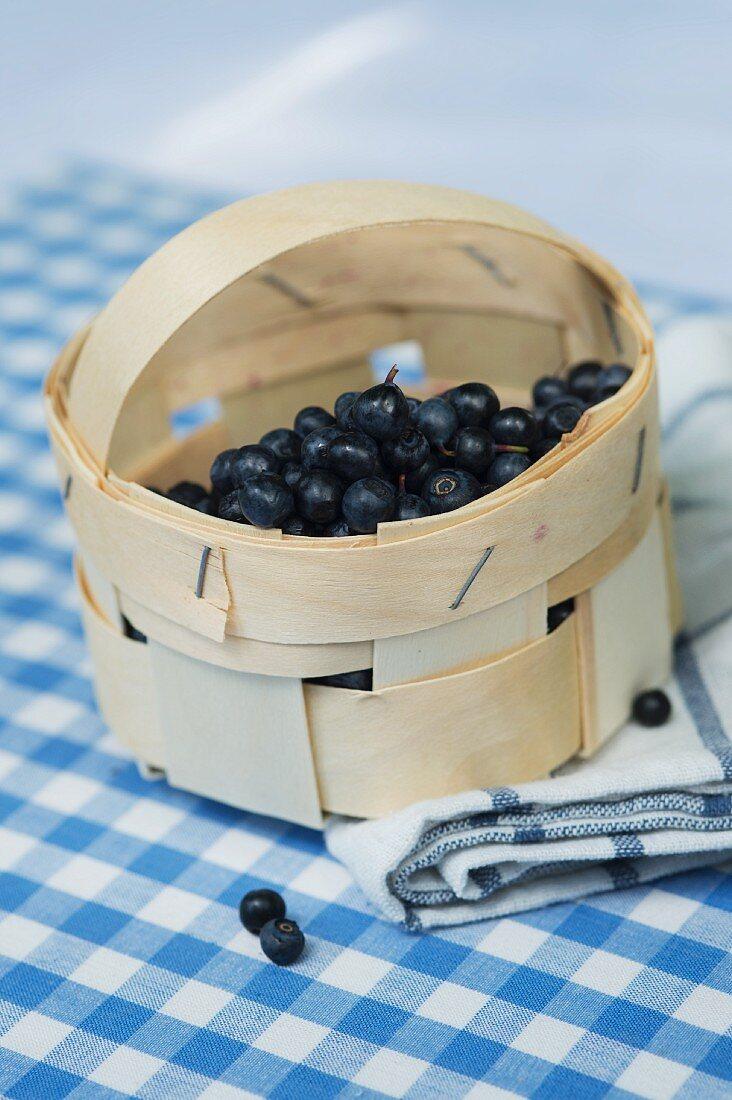 Bilberries in a punnet