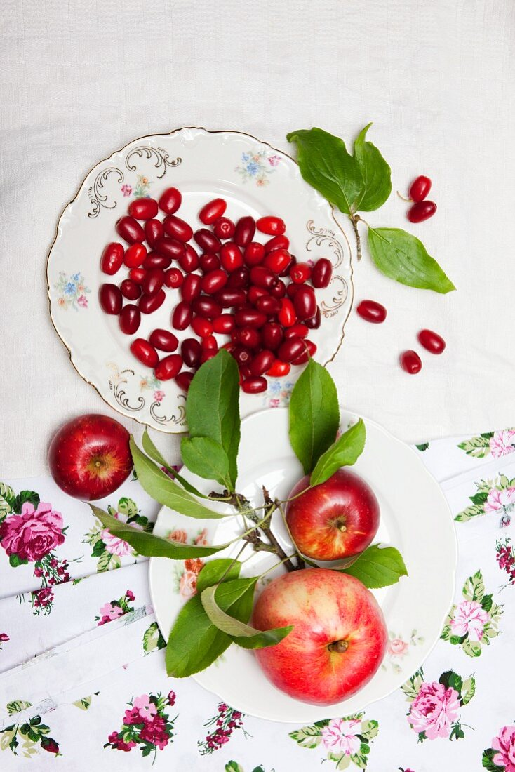 Cornel cherries and apples with leaves on a plate