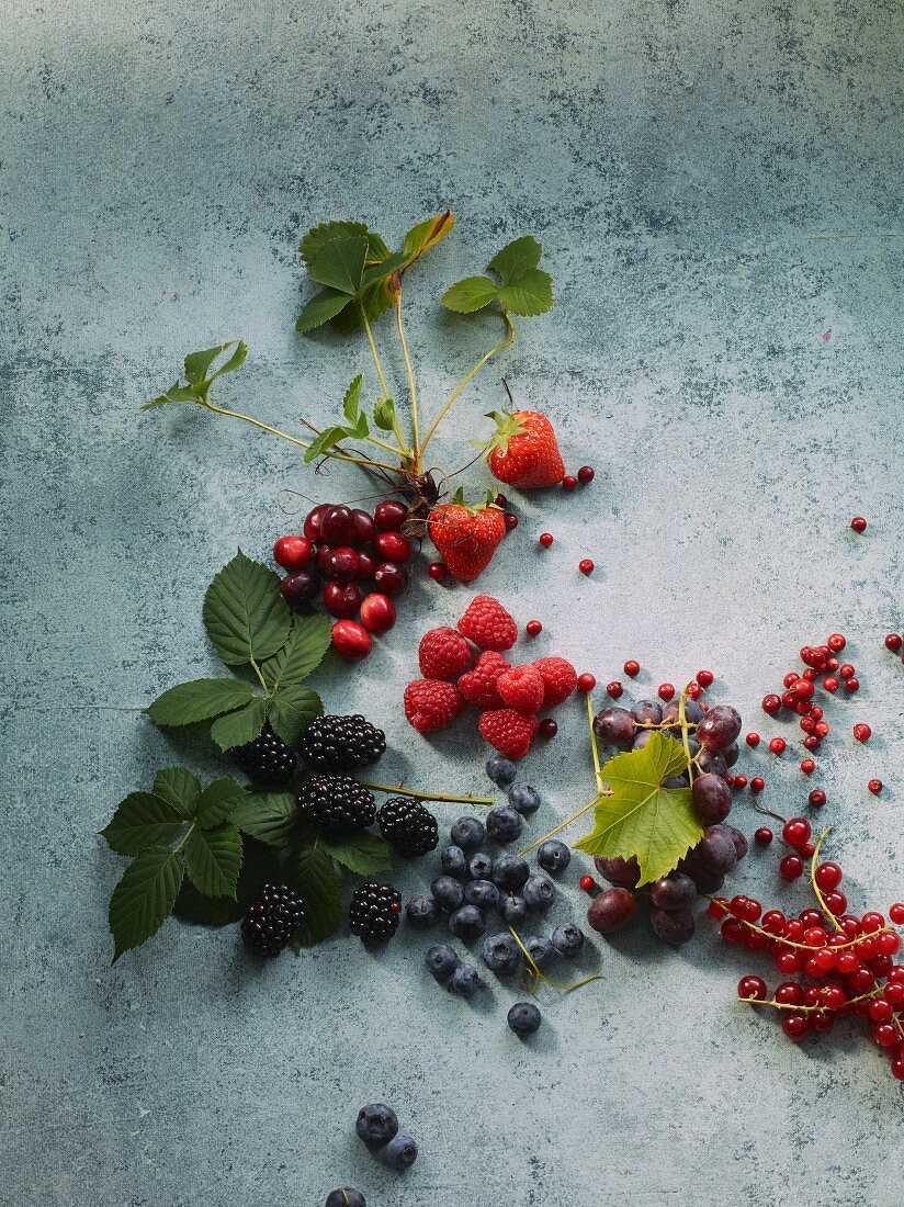 A still life of berries with leaves