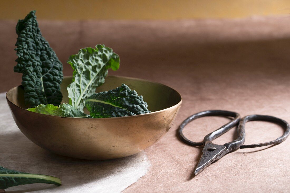 Cavolo nero in a bowl, with scissors to one side