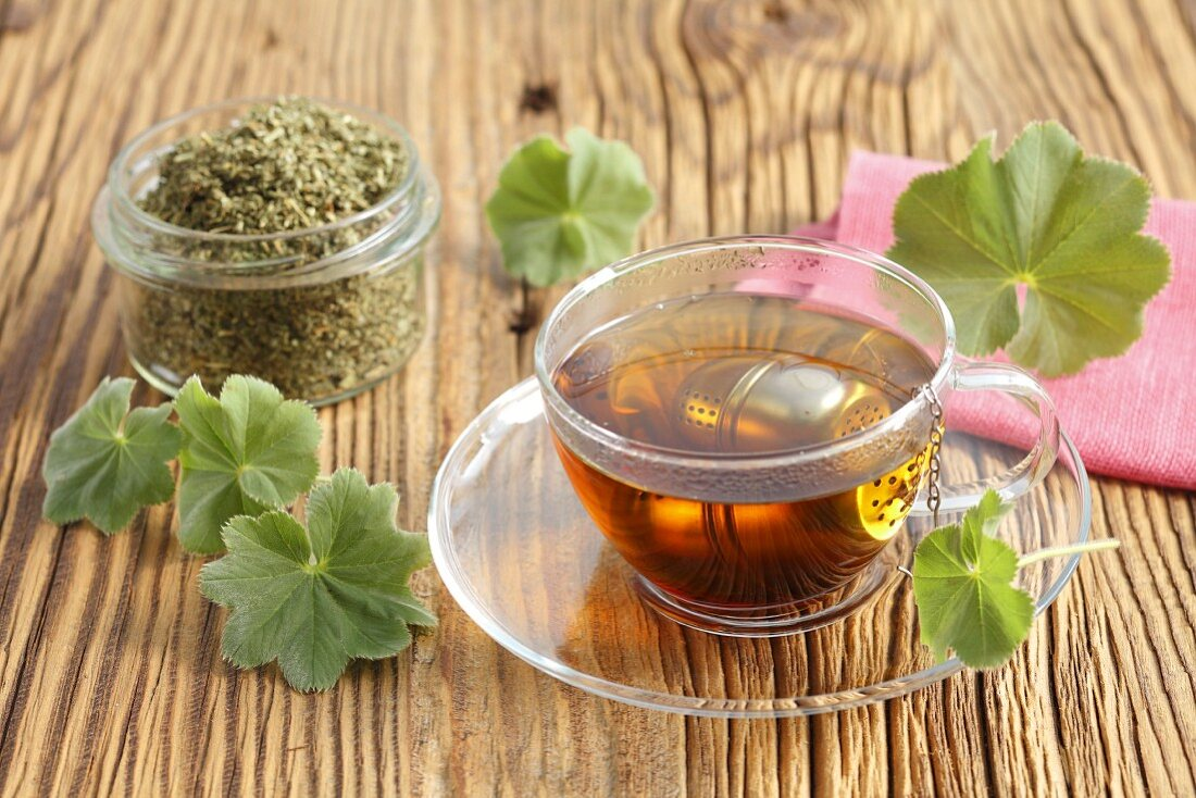 Lady's mantle tea with a tea ball in a glass cup