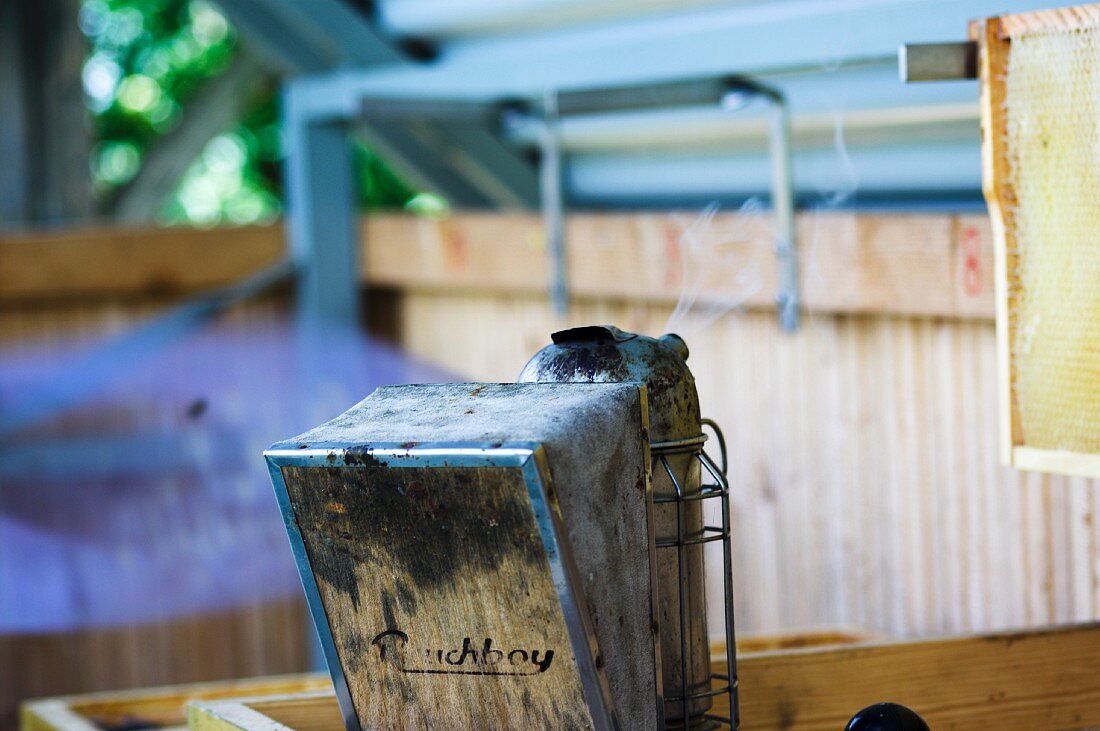 Smoking equipment for calming the bees