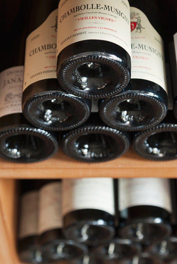 Bottles of red wine in a wine bin