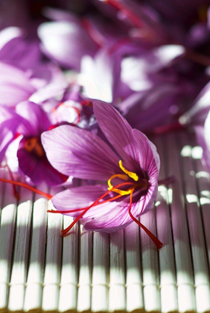Saffron crocuses on a bamboo mat