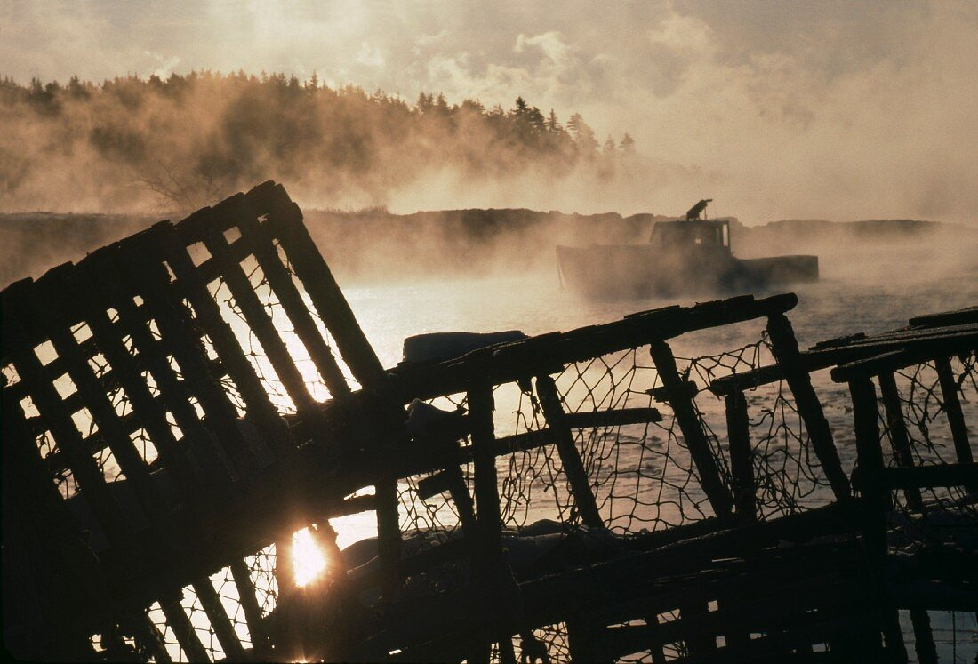 Lobster Traps on Foggy Bay, Maine, USA